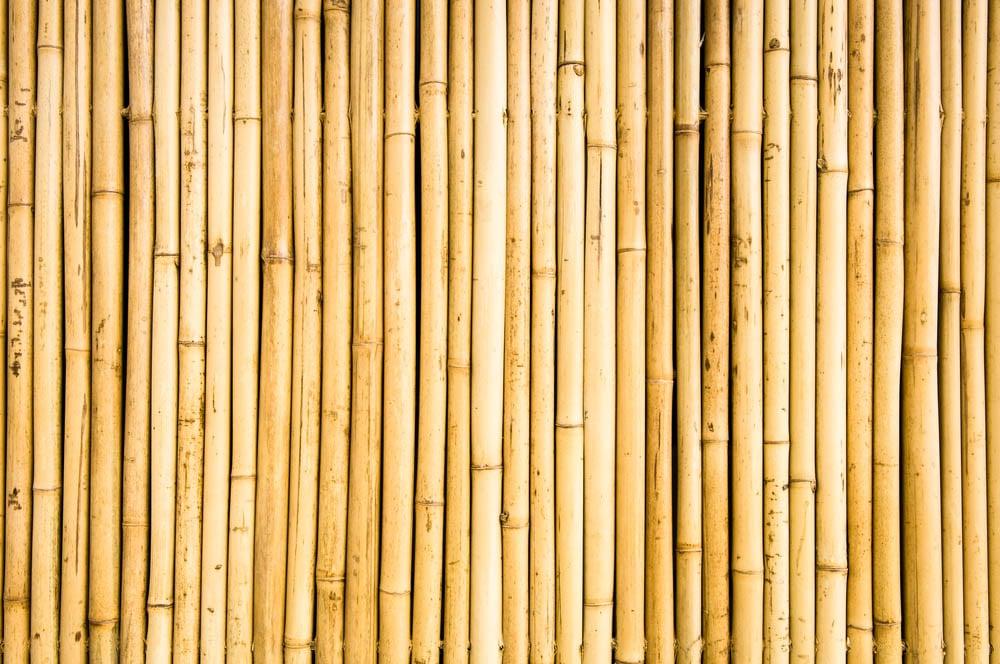 bamboo trust
